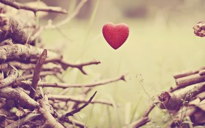 mood-trees-branches-stem-leaf-stem-flower-flowers-hearts-hearts-backgrounds-wallpapers